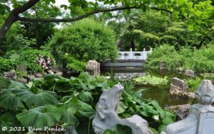 home_gardening_inspiration_plus_a_boxwood_garden_and_chinese_garden_missouri_botanical_garden_part_4.png